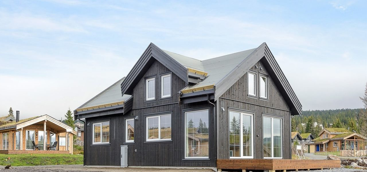 Summer 2020 results. Supplement the series of Norwegian houses in Lillehammer.